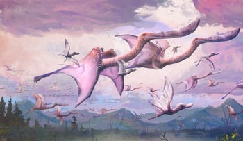 Impression of a flock of adult and hatchling flamingo-like pterosaurs, Pterodaustro guinazui, taking flight in Early Cretaceous Argentina.