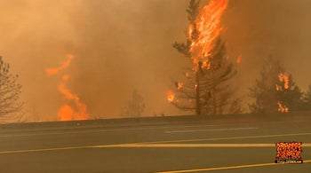 Trees burning during a recent wildfire in Canada.
