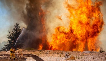Firefighters working to quell a wildfire near Jerusalem, August 4, 2021