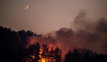 A forest fire on Evia island in Greece, this week.