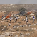 A screenshot from a video shot by the author, showing settlers throwing stones and setting fires.
