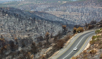 The Jerusalem hills after a wildfire, last week.