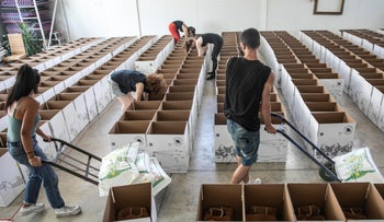 Volunteers of the Tel Aviv-based 'Culture of Solidarity' pack food boxes for families in need, this week.