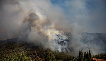 A forest fire in the Jerusalem Hills, August.