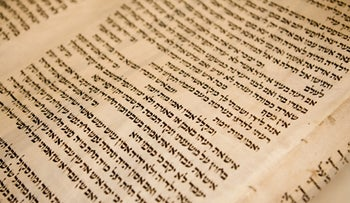 A close up of text in a a Torah scroll.