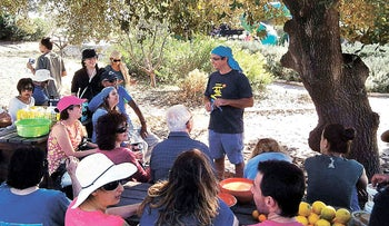 Learn about using natural ingredients for outdoor cooking in the Lower Galilee.