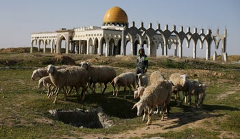A Palestinian boy herds sheep in front of the ruins of Yasser Arafat International Airport in Rafah, Gaza, Feb. 5, 2016.