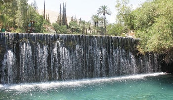 Cool off this weekend at the Gan Hashlosha National Park in the north.