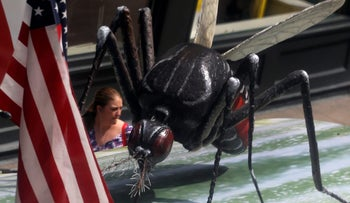 A woman walks past a giant fake mosquito placed on top of a bus shelter as part of an awareness campaign about the Zika virus in Chicago, May 16, 2016.