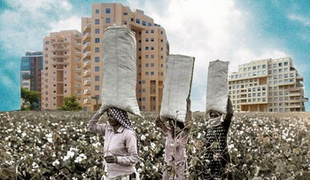 An illustration showing cotton pickers with high-rise apartment buildings in the background.