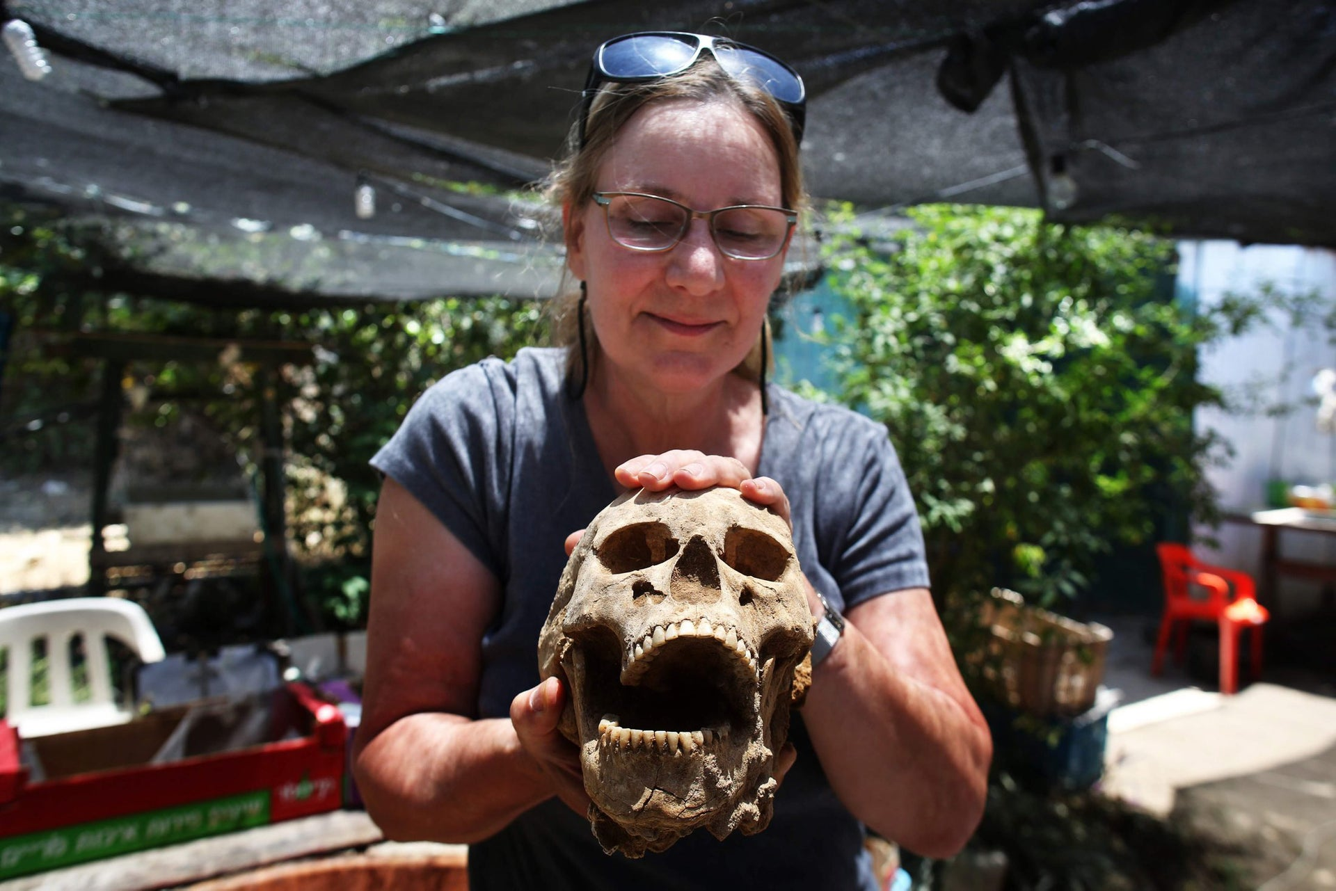US anthropologist and pathologist, Sherry Fox shows a skull discovered at the excavation site of the first Philistine cemetery ever found on June 28, 2016 in the Mediterranean coastal Israeli city of Ashkelon.