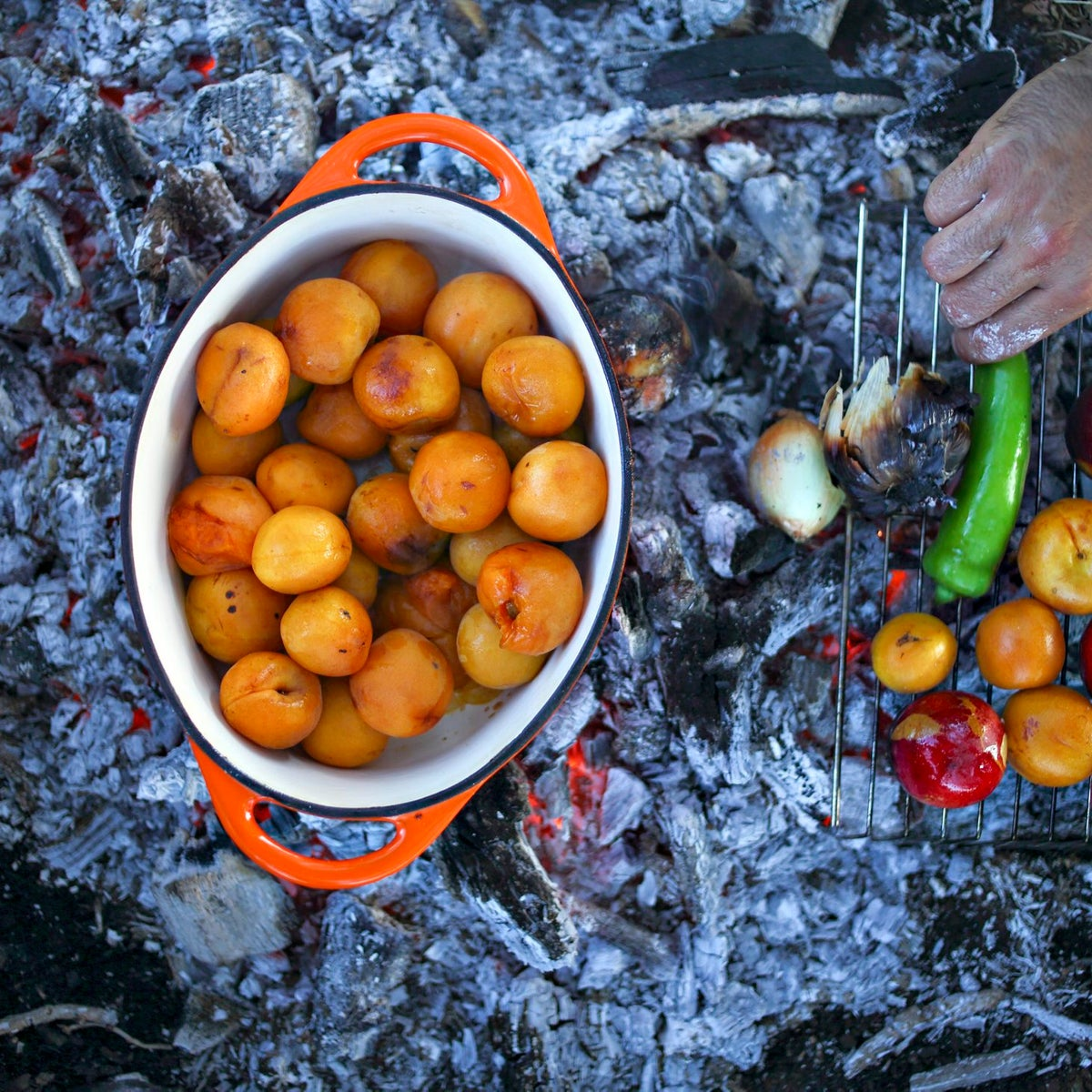Sweet apricots and vegetables roasting on the fire in the Golan Heights.