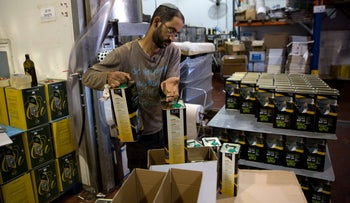 An Israeli settler prepares olive oil containers at the Achia Olive press factory in the Jewish settlement of Shilo in the occupied West Bank on November 12, 2015. The European Union announced that goods from settlements -- Jewish communities built in areas occupied by force in 1967 -- must be specifically labelled, infuriating Israel. The EU ruling affects products imported from settlements in the occupied West Bank, east Jerusalem and Golan Heights, all taken by Israel in the 1967 Six-Day War.