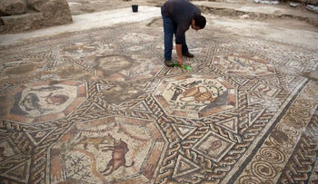 A worker of the Israel Antiquities Authority cleans the 1,700-year-old mosaic as it is presented to the public and the press for the first time, Lod, November 16, 2015.