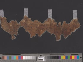 A section of the Dead Sea Scrolls deciphered by the researcher Alexey Yuditsky, August 2017.