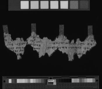 A multispectral photograph of a Dead Sea Scrolls fragment deciphered by Alexey Yuditsky, August 2017.