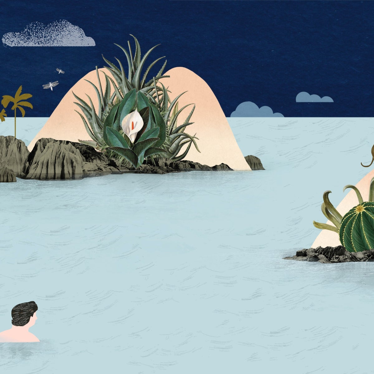 Illustration: A person swims toward islands evoking male and female genitalia.