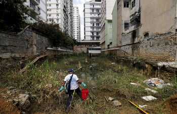 A health agent carries a bucket of guppy fish to place them in standing water, to consume mosquito larvae in an empty lot of Rio de Janeiro's Tijuca favela neighborhood.