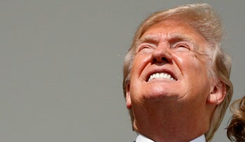 Donald Trump stares into a solar eclipse without protective glasses, August 21, 2017.