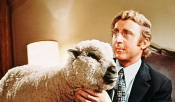 """Gene Wilder with a sheep in Woody Allen's """"Everything You Always Wanted to Know About Sex"""""""