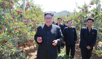 North Korean leader Kim Jong Un visits a fruit orchard in South Hwanghae province in this undated photo released by North Korea's Korean Central News Agency, September 21, 2017