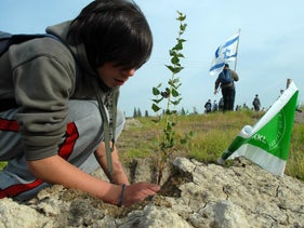 A teenager plants a tree at an event organized by the National Jewish Fund, January 2010.