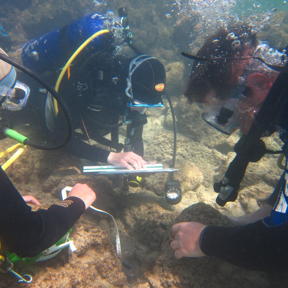 Haifa University diving archaeologists exploring the seabed off Tel Dor, where the remains of a Roman-era port have delivered anchors, ship bits, pottery... and a statue base from 1,900 years ago, revealing the name of a previously unknown governor of Judea: Gargilius Antiquus.