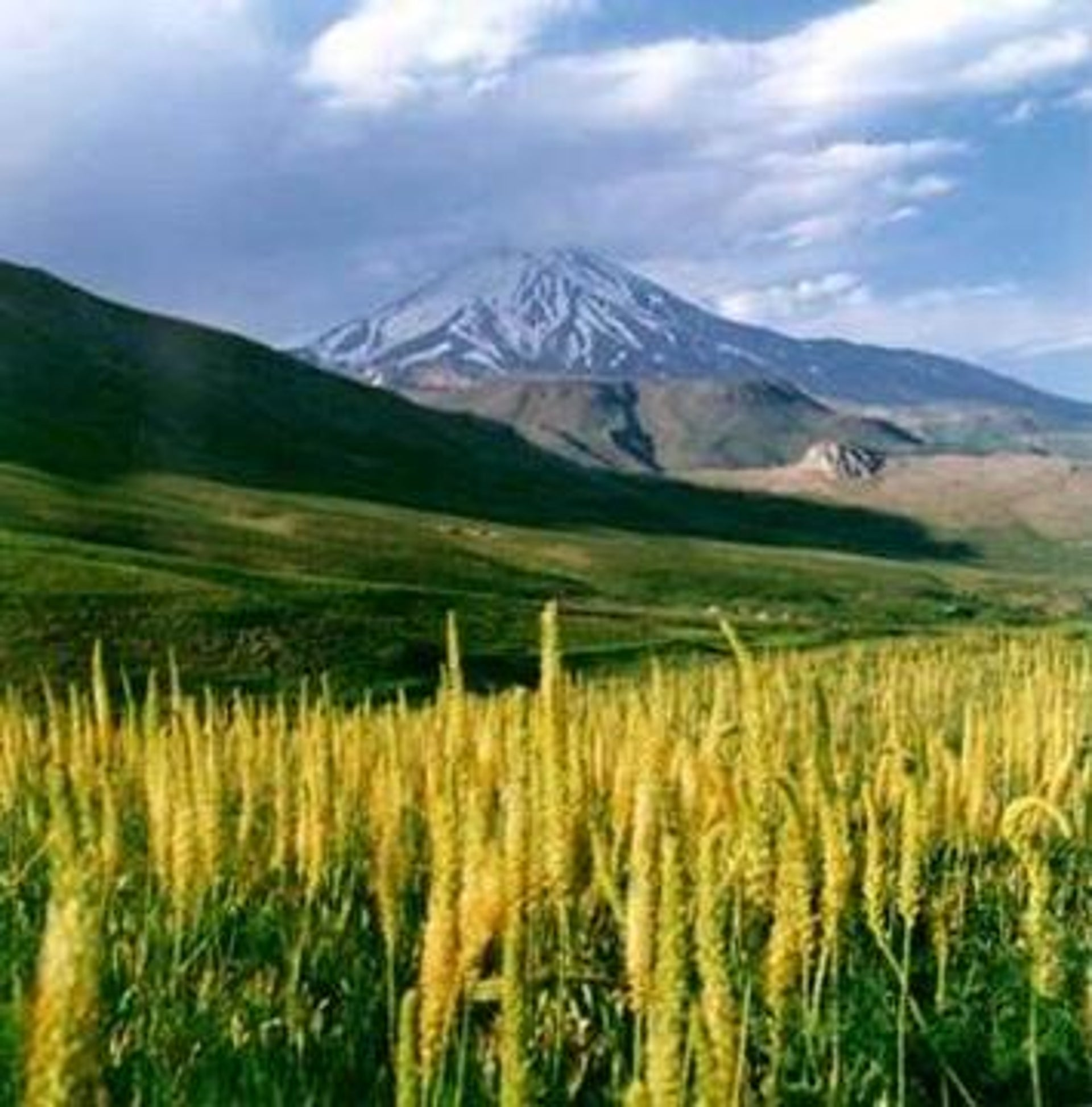 Mount Damavand, Iran's highest mountain: This could be the area, roughly speaking, from where the original Amorites came with their flocks.