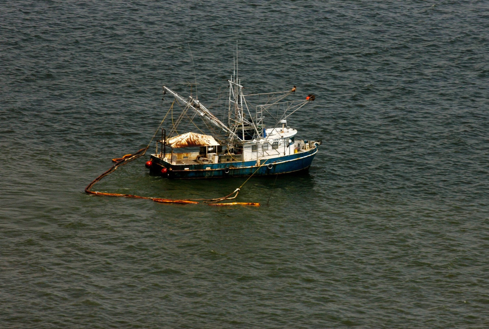 A shrimp boat pulling oil containment booms near Grand Isle, Louisiana, June 5, 2010. Fishermen say the amount of shrimp in the Gulf dropped by more than 35 percent after the Deepwater Horizon oil spill.
