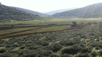 The plots of land belonging to Fawzi Ibrahim from the village of Jalud north of Ramallah.