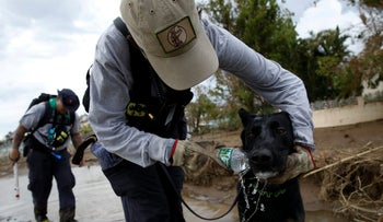 "Massachusetts Task Force 1 K9 ""Arie"" drinking water while the team conducts a search operation at an area hit by Hurricane Maria in Puerto Rico, September 25, 2017."