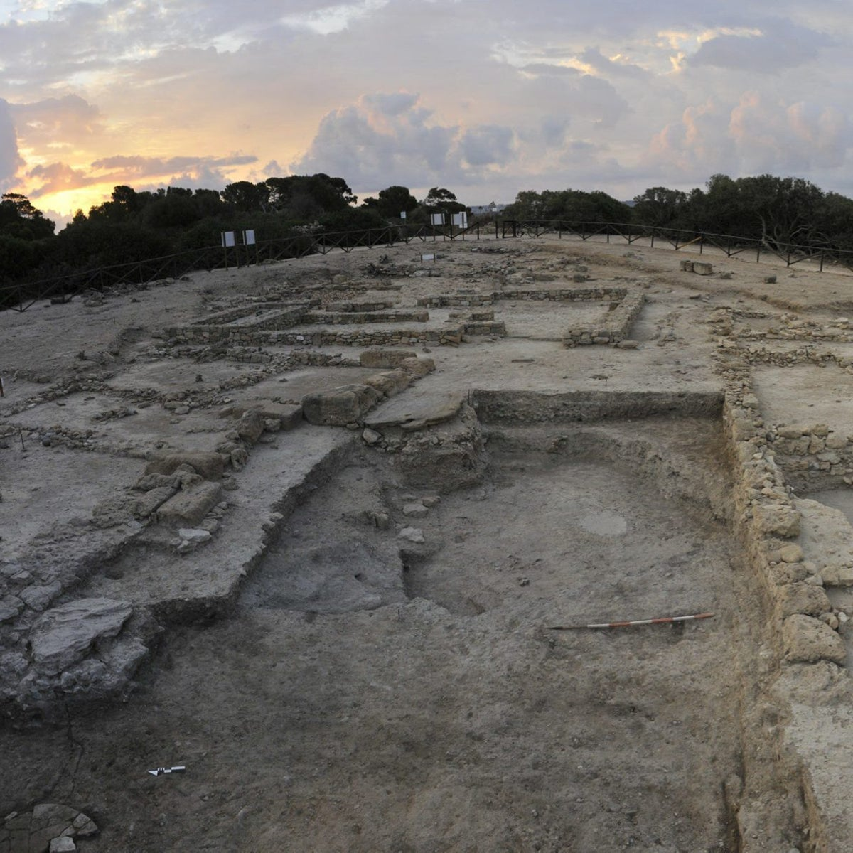 Motya, Area D, western flanks of the Acropolis: A waste pit from the earlieast stages of the Phoenician colony (8th century BCE), which produced the back bones of sharks, the tooth of a cat, seeds of Levantine plants and animal bones.