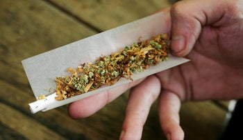 A user rolling a marijuana joint in the Netherlands coffee shop.