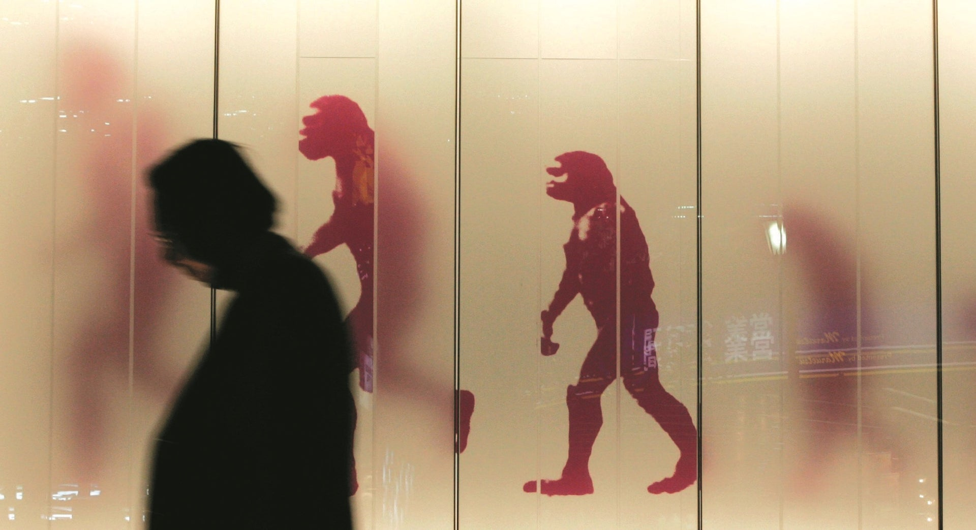 Human evolution is a lot messier than we thought