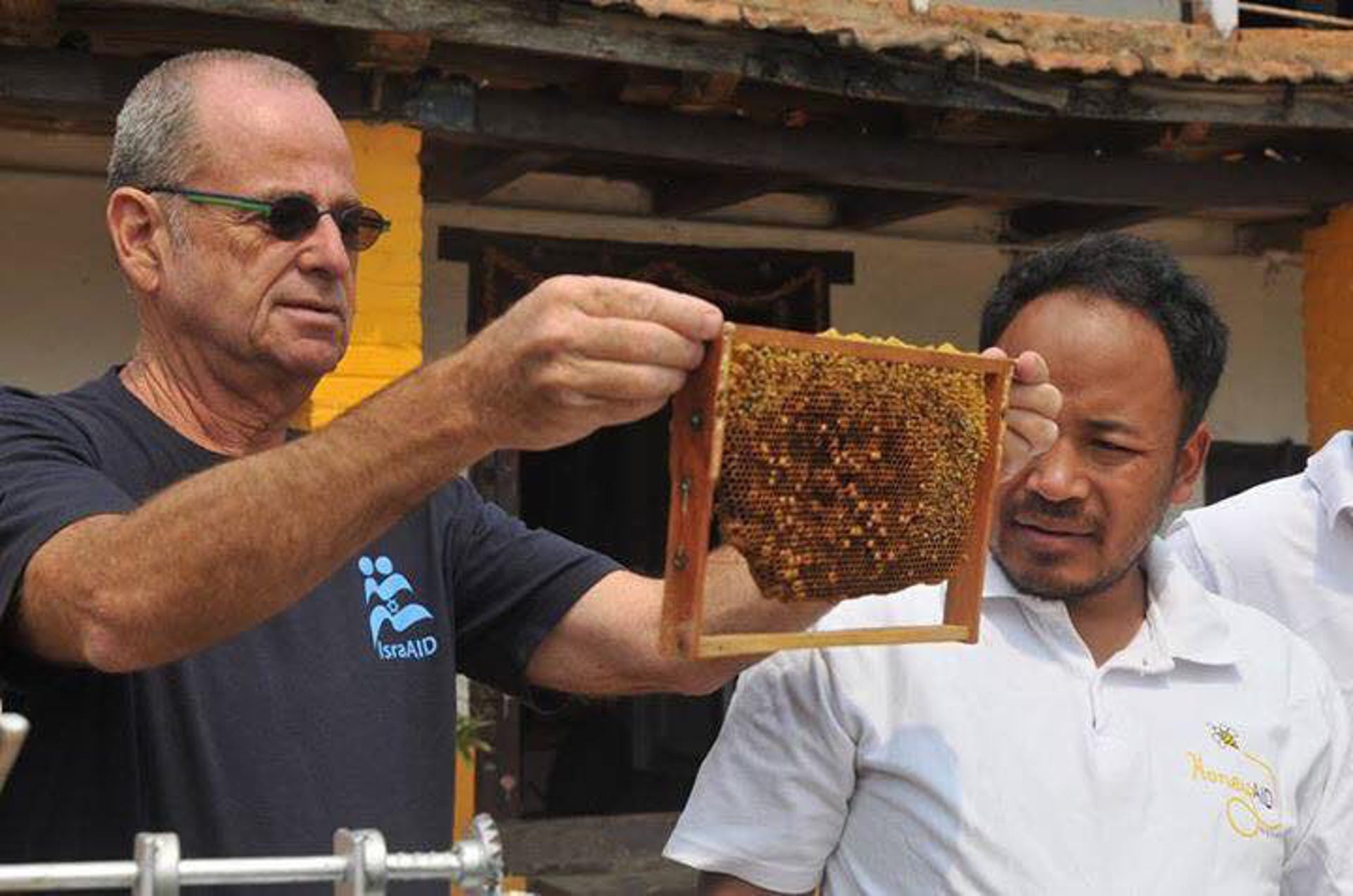 Tete Dagani inspects a honeycomb. After the 2015 earthquake, he and Reizy decided to devote all their time to Nepal.