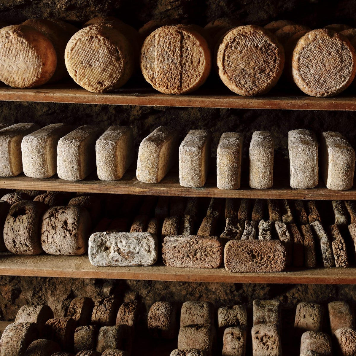 Rare cheeses ageing at Har Eitan Farm. Some are as much as five or six years old.