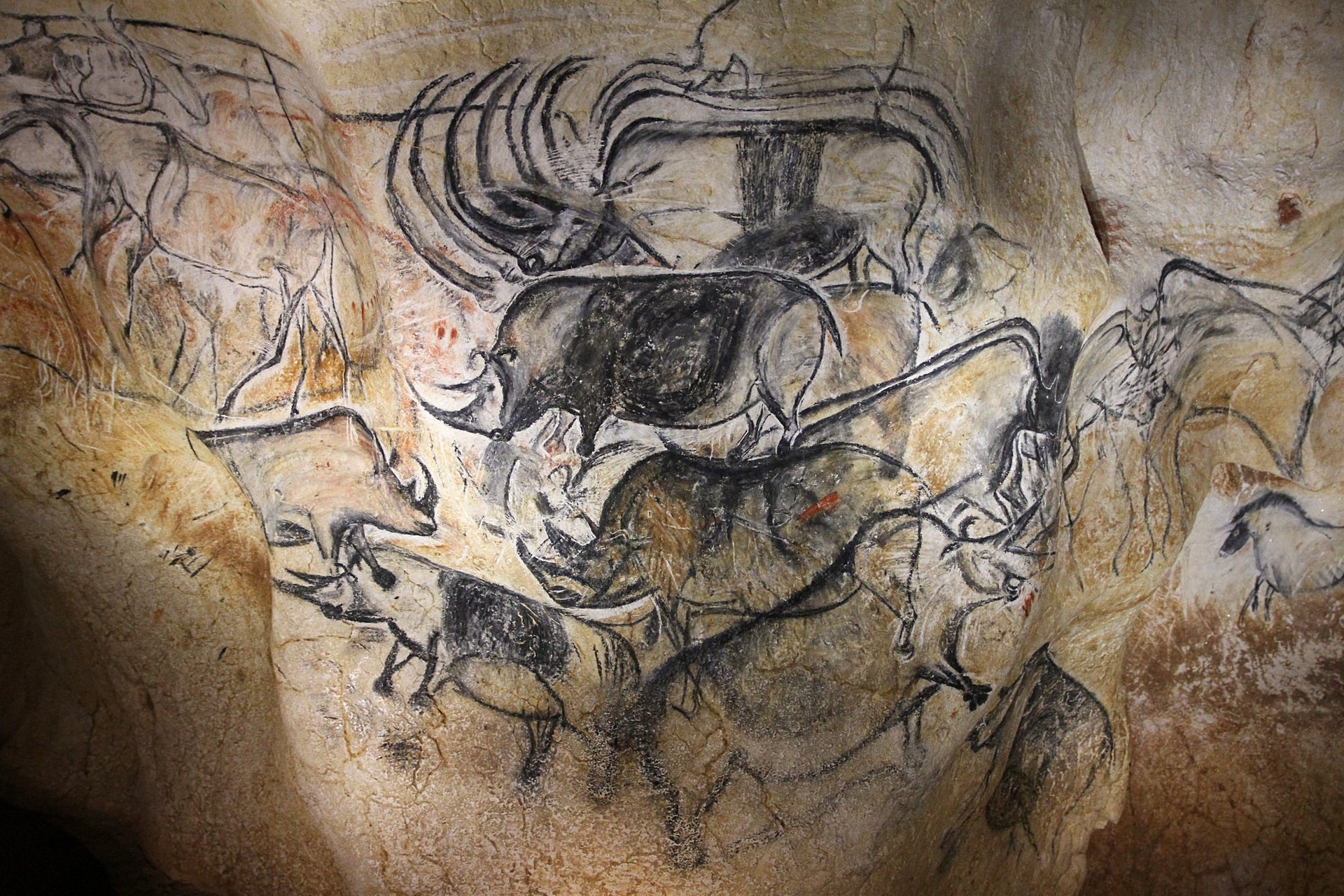 Aurignacian-era paintings from Chauvet cave, southern France, dated to more than 30,000 years ago: Rhinos.