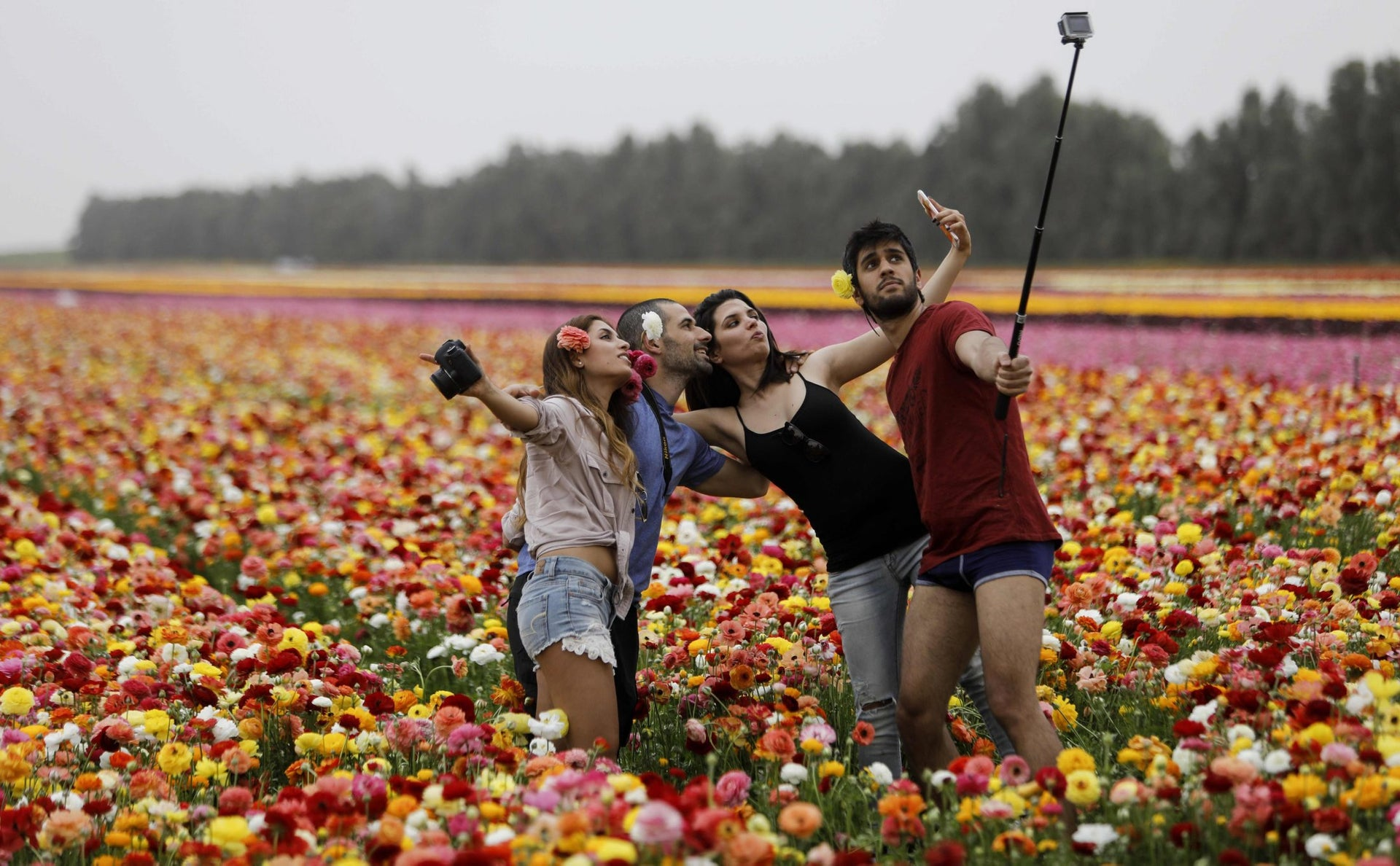 "Israelis take a group ""selfie"" picture with a cell phone and a rugged camera, as they enjoy the Ranunculus flowers in a field in the southern Israeli Kibbutz of Nir Yitzhak, located along the Israeli-Gaza Strip border, during the Jewish holiday of Pesach (Passover) on April 12, 2017."