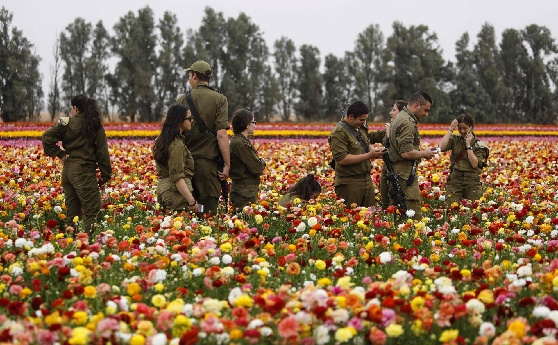 Israeli soldiers enjoy the Ranunculus flowers in a field in the southern Israeli Kibbutz of Nir Yitzhak, located along the Israeli-Gaza Strip border, during the Jewish holiday of Pesach (Passover) on April 12, 2017.
