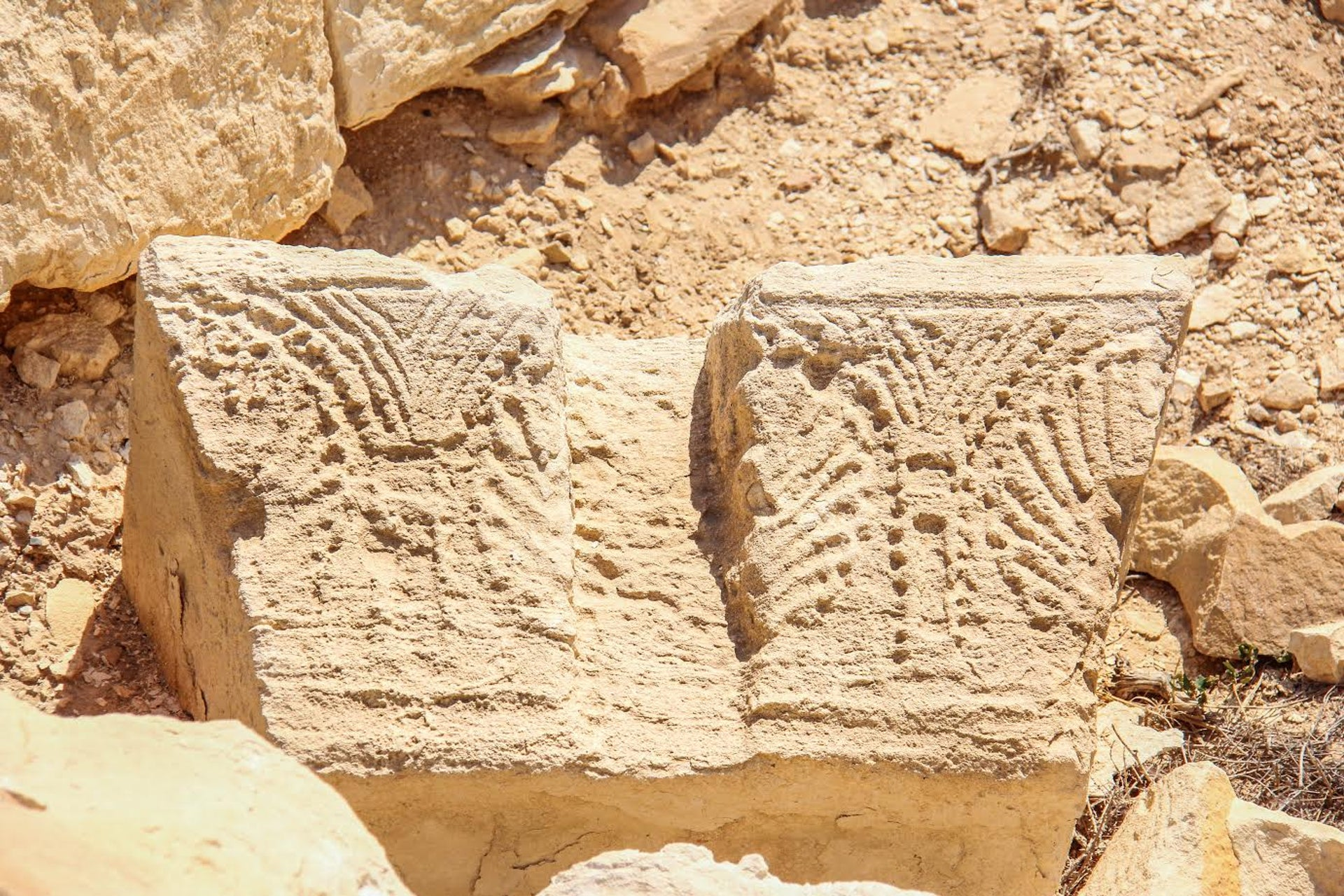 A column capital in the ruins of Ruheibe, decorated in typical Nabatean style.
