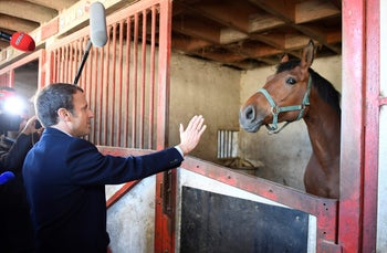 French presidential election candidate for the En Marche ! movement Emmanuel Macron gestures as he visits a stable while campaigning on April 29, 2017 in Usseau near Poitiers, central France, ahead of the second and final round of the presidential elections which takes place on May 7.