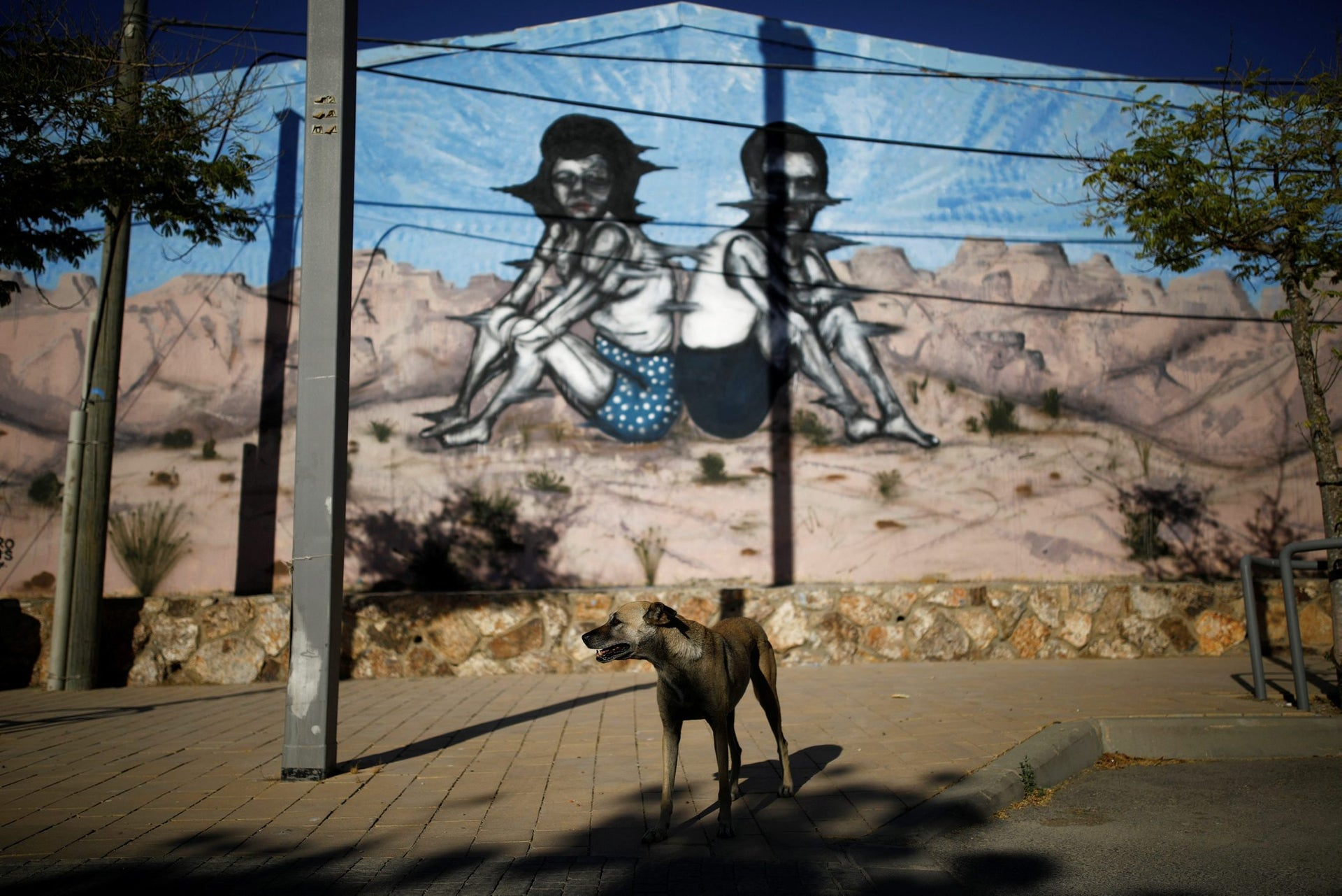 A dog stands near a wall painting by American-Israeli artist Zero Cents during POW! WOW! Israel in Arad, June 5, 2017.
