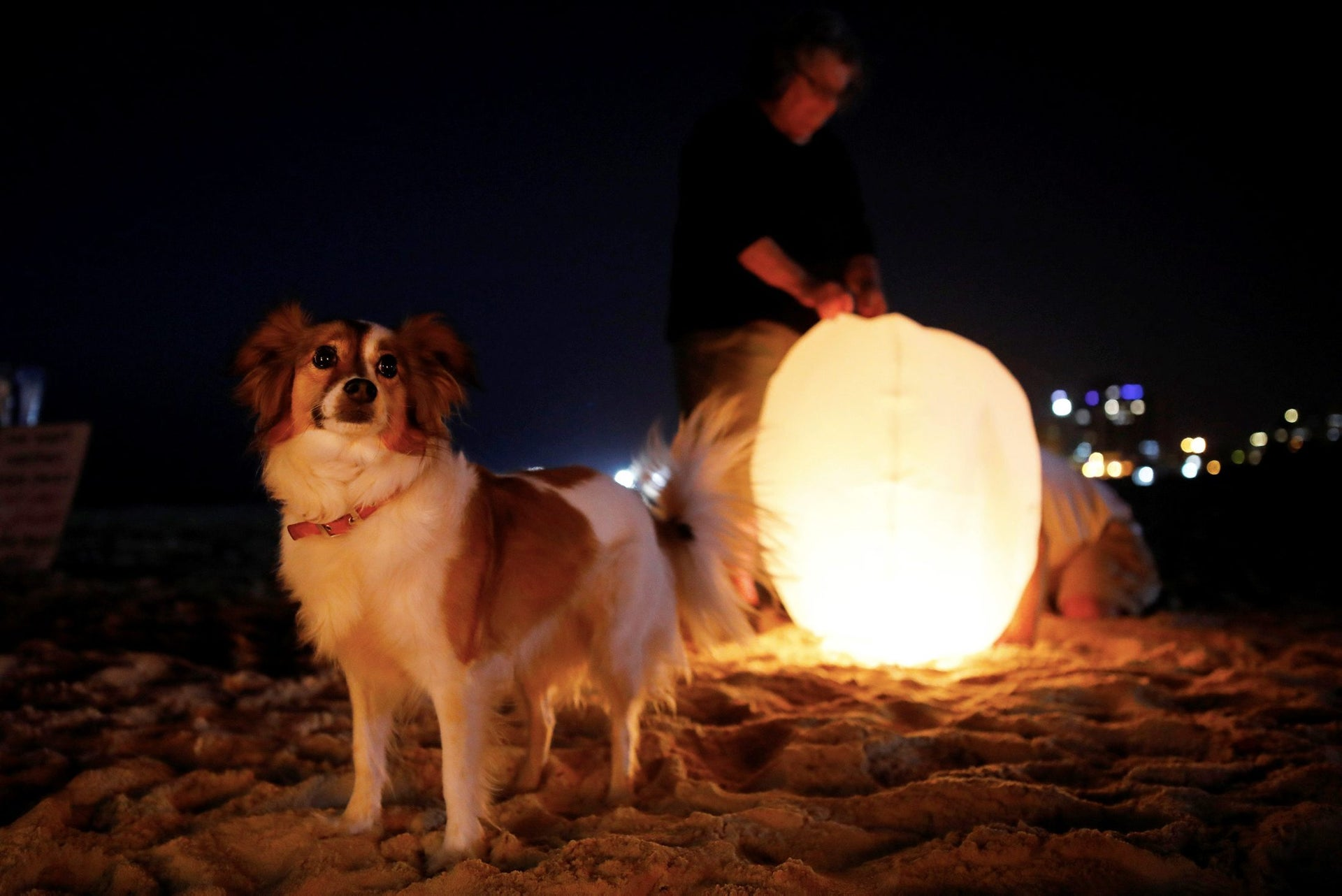 An Israeli peace activist prepare a sky lantern before release it, hoping to illuminate the sky in Gaza, as they protest Israel's reduction of power supply to Gaza, at a beach in Ashkelon, southern Israel June 19, 2017.