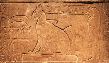 his Wednesday, May 23, 2012 file photo shows the sarcophagus for Prince Thutmose's cat at an exhibit in Seattle.