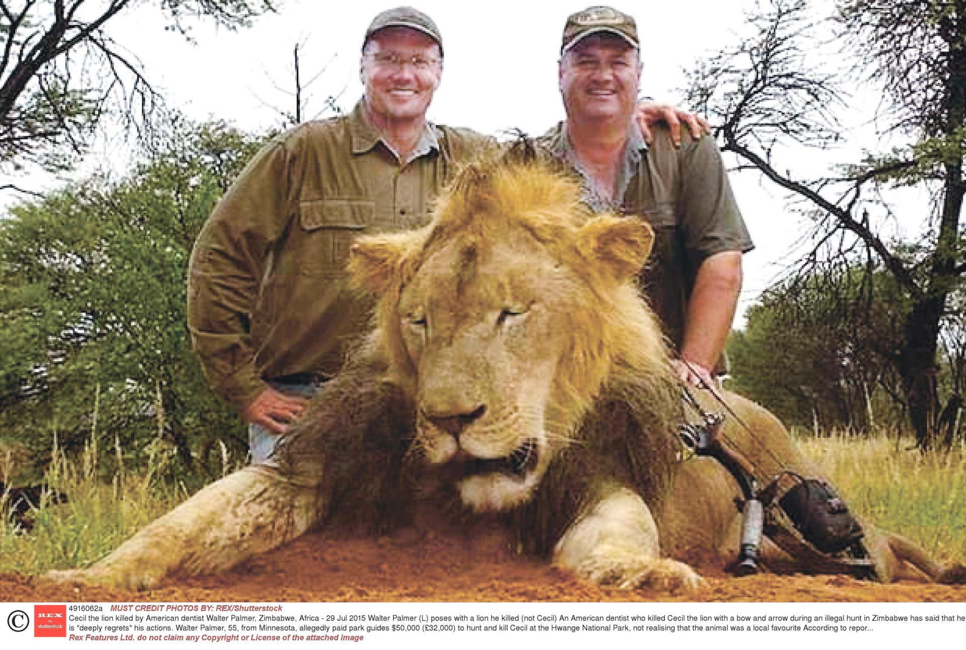 The death of Cecil the lion, who was hunted by an American dentist, Walter Palmer, in Zimbabwe in 2015, caused global outrage.