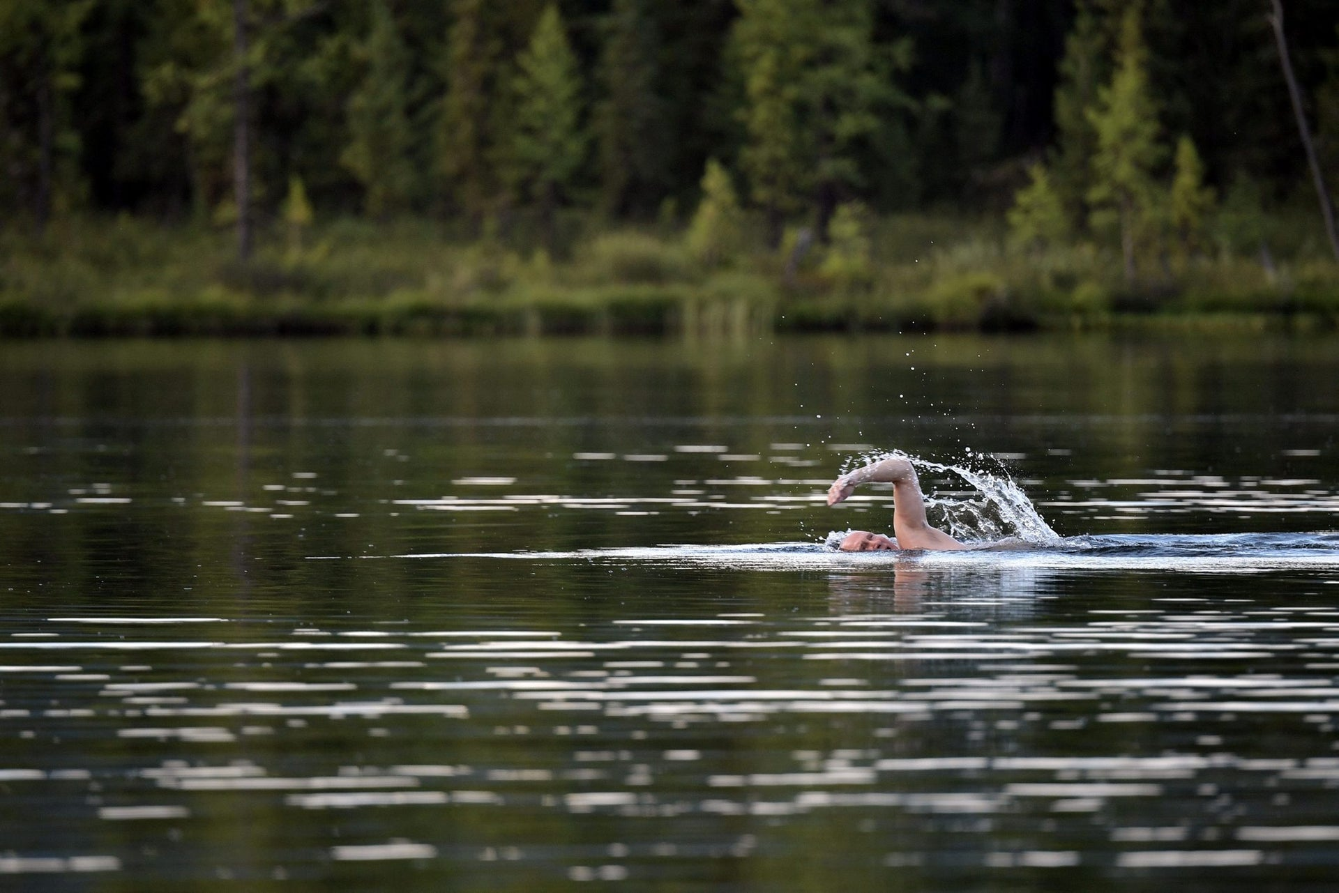 Russian President Vladimir Putin swims on a hunting and fishing trip which took place on August 1-3 in the republic of Tyva in southern Siberia, in a photo released by the Kremlin on August 5, 2017.