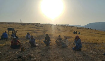 Palestinian shepherds grazing their flock in the Auja area of the West Bank, north of Jericho.