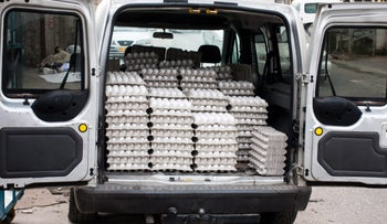Hundreds of eggs in a van in Israel