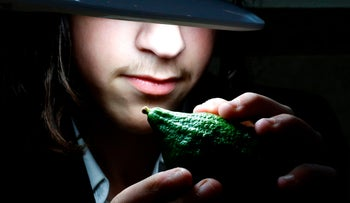 "An illustrative photo of an ultra-Orthodox boy inspecting a citron (or ""Etrog"" in Hebrew), one of four plant species to be used during the Sukkot holiday, in the Israeli city of Netanya, October 2, 2017."
