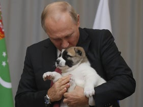 Russian President Vladimir Putin kisses a Turkmen shepherd dog gifted to him by Turkmen President Gurbanguly Berdimuhamedov in Sochi, Russia, October 11, 2017.